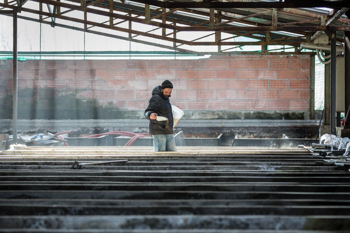 Chiara Bassi, Fotografa freelance a Udine - Reportage, Sorgente del Gusto